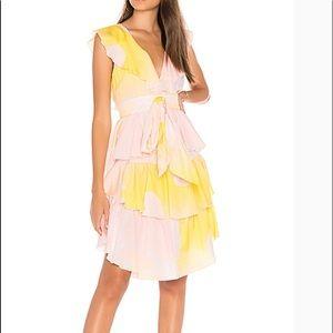 Cynthia Rowley Jetset Pineapple dress size 10